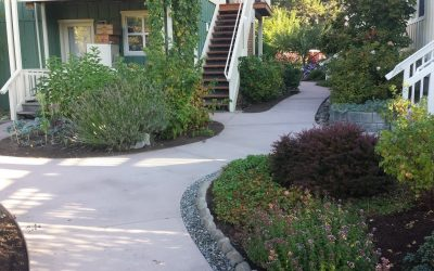 Feature Project: New Sidewalks at Bellingham Co-Housing