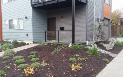 How to rainscape with pervious concrete