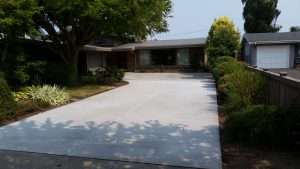 Long, broom-finished concrete driveway surrounded by beautiful landscaping.